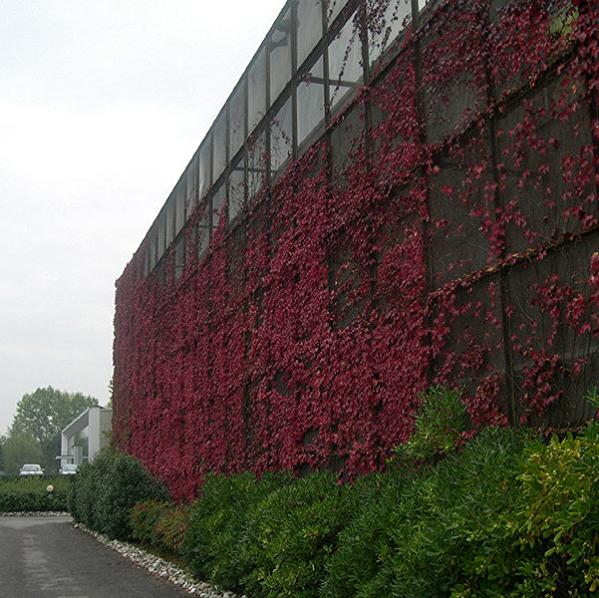 façade en métal déployé aluminium