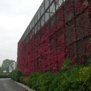 mur vertical alu